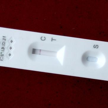 A negative COVID-19 lateral flow test © Nabokov